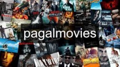 Photo of Pagalmovies | Pagal movies | Pagalmovies: You have to choose the best quality movies